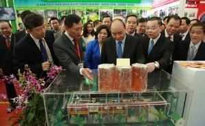 Thủ tướng Chính phủ - Nguyễn Xuân Phúc thăm quan mô hình và sản phẩm trưng bày của Viện Cơ điện và Công nghệ sau thu hoạch
