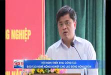 Hội nghị triển khai công tác Đào tạo nghề Nông nghiệp cho lao động nông thôn tại tỉnh Bình Định......