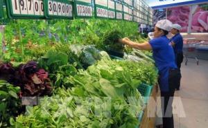 HTX nông nghiệp vượt khó và phát triển trong bối cảnh đại dịch Covid-19 (11/4/2020)